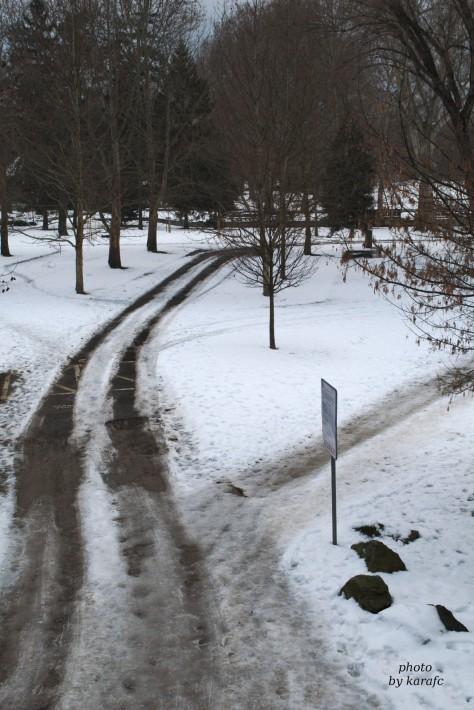 winter at Sad Janka Kráľa Park, Bratislava