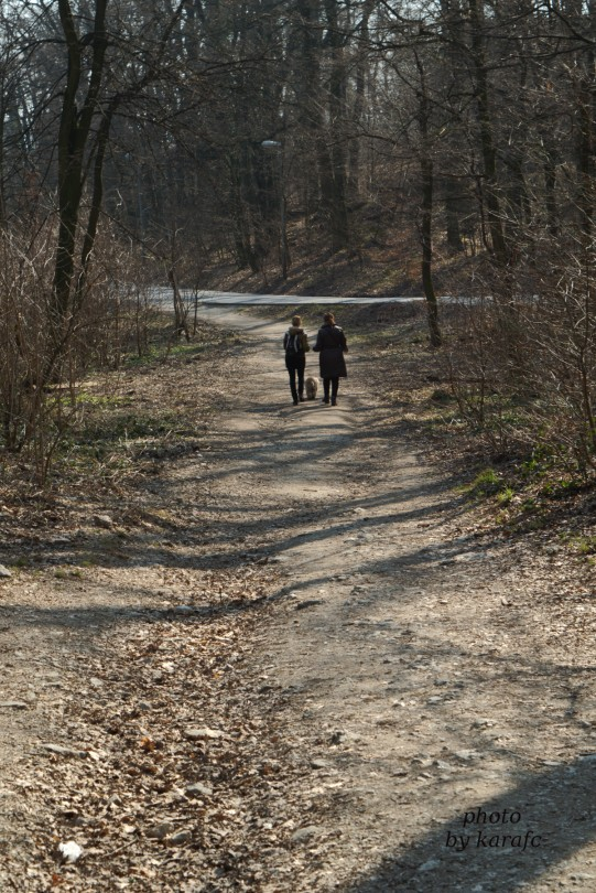 A walk at Bratislava Forest Park - Koliba