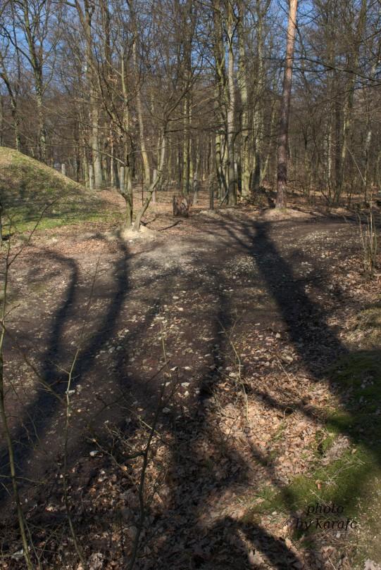 Bratislava Forest Park - Koliba - playground