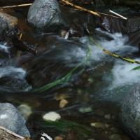 Nature trail in Kakopetria